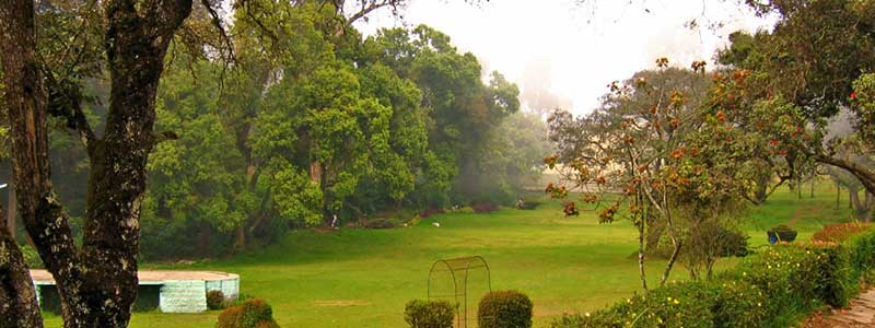 Bryant Park, Kodaikanal Tourist Attraction